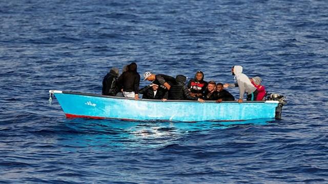 Algerian_migrate