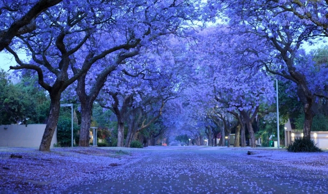 City of Harare Zimbabwe