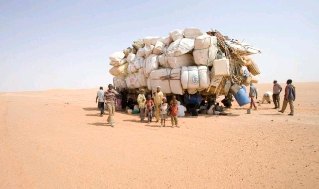 Migrants in Desert