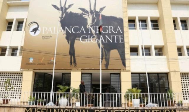 Museu Nacional de História Natural de Angola