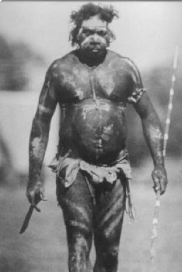 Tasmanian male
